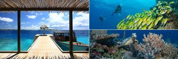 Six Senses Laamu, Dive Jetty at Diving School, Scuba Diving with Fish and Turtle Swimming Amongst Coral Reef