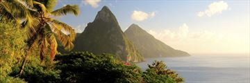 St Lucia flora and Pitons