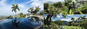 Pool, Mountain Views and the Garden at Strawberry Hill