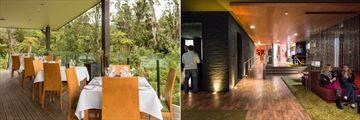 Te Waonui Forest Retreat, The Canopy Restaurant Terrace and Frond Bar