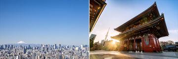 Tokyo skyline & architecture