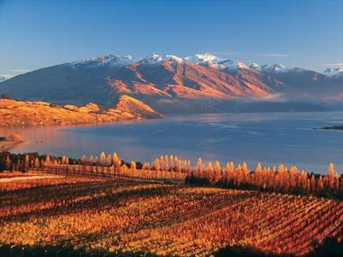 Discover the best of the South Island