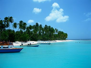 Discover Tobago - The authentic Caribbean island