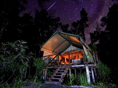 Safari Tent under the stars