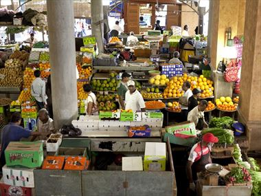 Markets and mangroves in Mauritius