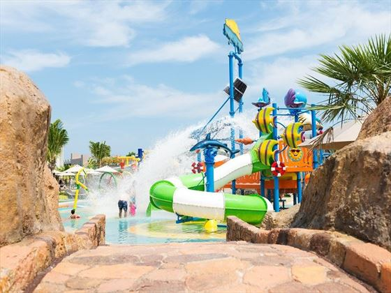 Aqua Play Water Slides