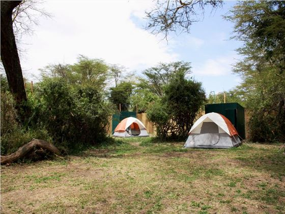 Get back to nature with proper camping experiences