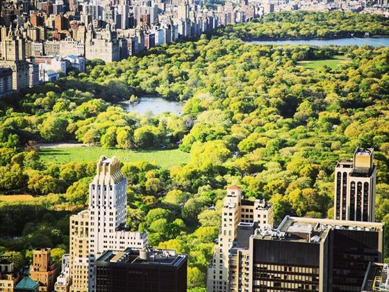 Aerial view of New York's iconic Central Park