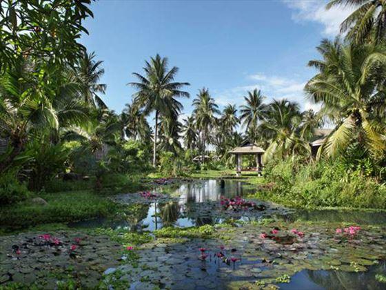 Anantara Phuket Villas lagoon