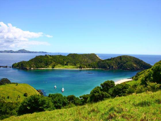 Bay of Islands scenery