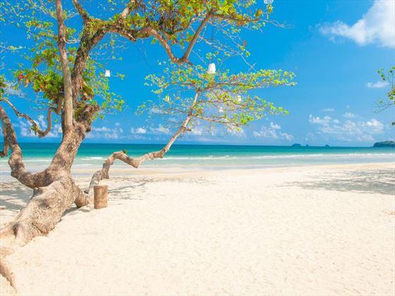 Koh Chang beach