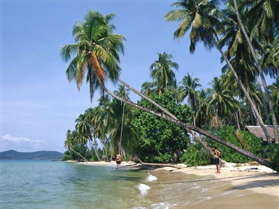 Palm-fringed beach in Trat