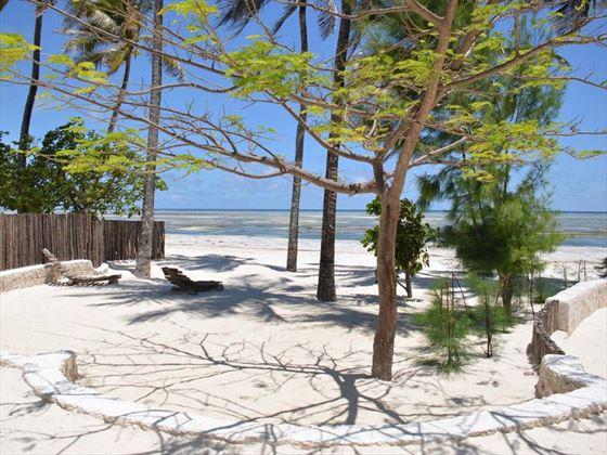 Beach views at Indigo Beach Zanzibar