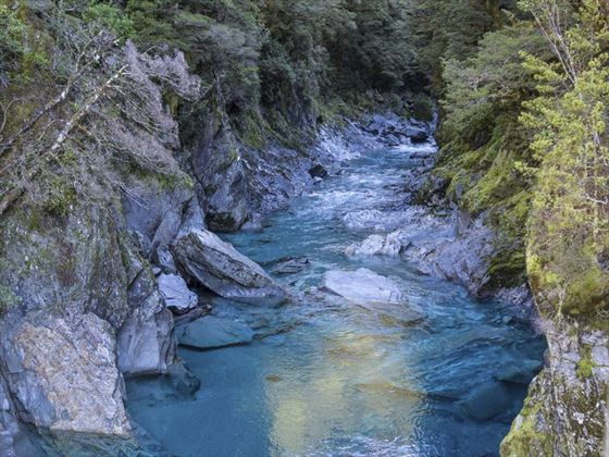 Blue pools at Haast Pass