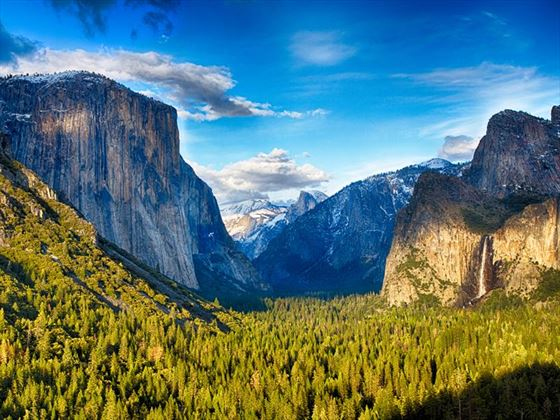 Yosemite National Park Wildlife Holidays 2018 2019 Holidays In Yosemite National Park