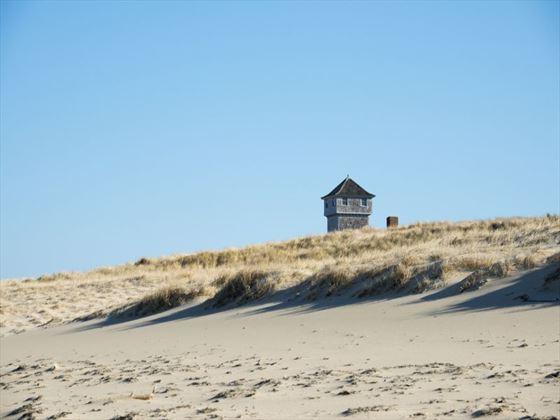 Cape Code seashore