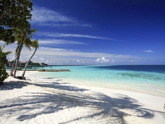 Glorious beaches at Centara Ras Fushi Resort & Spa