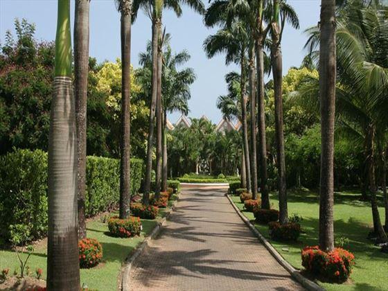 Coco Reef Resort garden