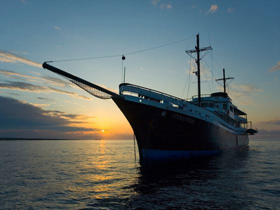 Cruise the Galapagos on board the Evolution