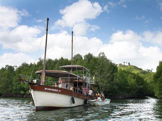 Elephant Hills - Luxury Tented Camp activities - Takua Pa Mangrove Swamp Exploration