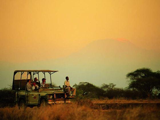 Evening Game Drive in Selenkay at Amboseli Porini