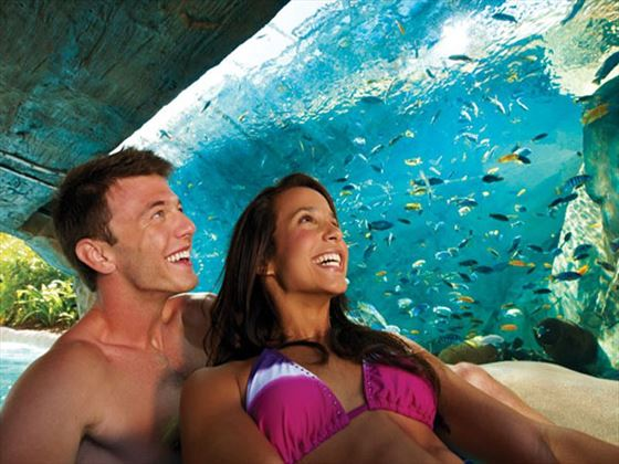 Fish Grotto at Aquatica™