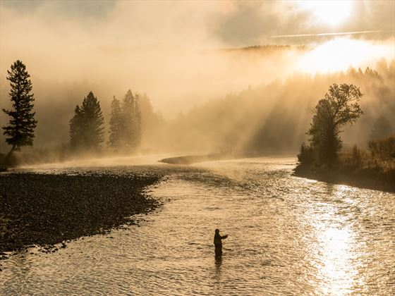 Fly fishing on Bull River, Kootenay Rockies