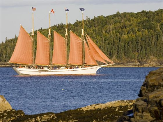 Four masted schooner under sail, Bar Harbor