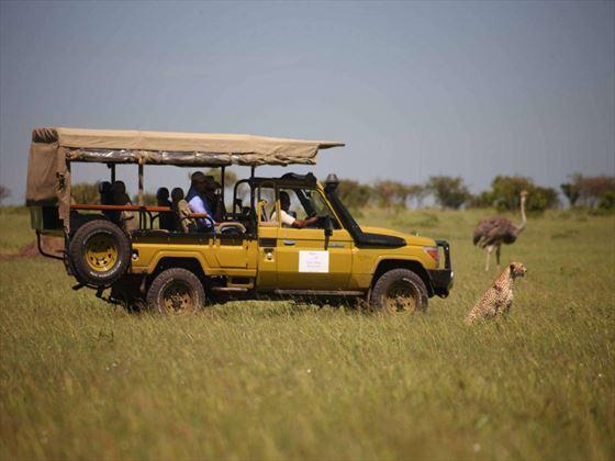 Game drive at Olare Mara Kempinski Masai Mara