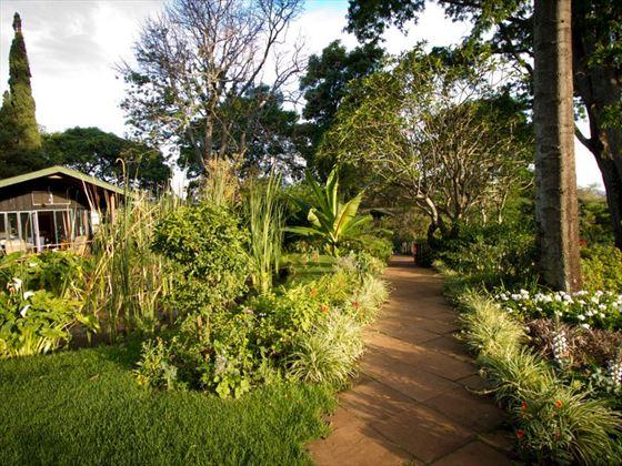 Gibbs Farm gardens