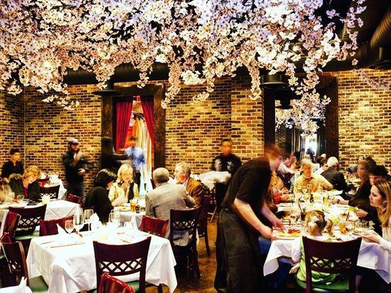 Gigi's Asian Bistro and Dumpling Bar, Houston