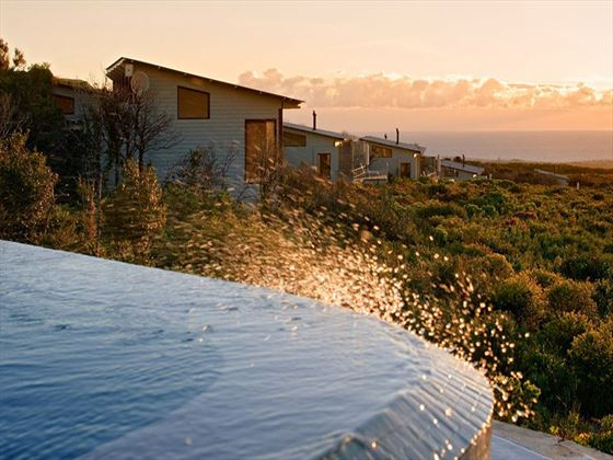 Grootbos Private Nature Reserve infinity pool