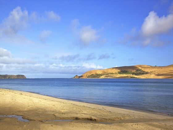 Mouth of Hokianga Harbour