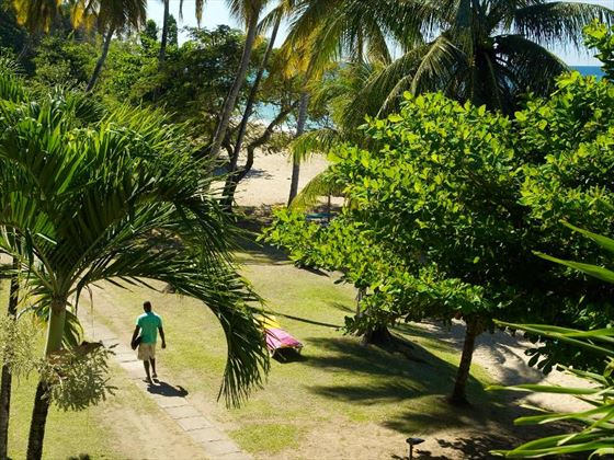 Hotel grounds at Turtle Beach Tobago