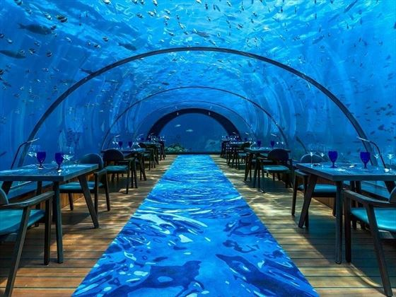 hurawalhi island resort 5.8 undersea restaurant seating