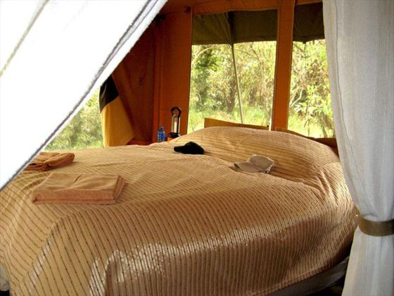 Interior view of the tents at Porini Bush Camp