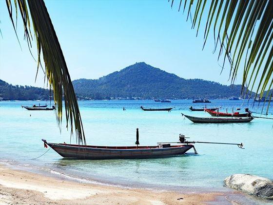 Koh Tao taxi boats