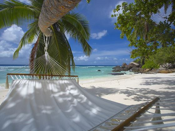 Relaxing hammock honeymoon moments
