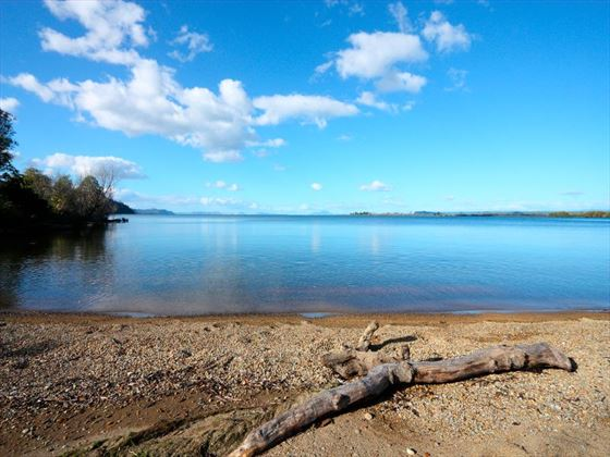 Lake Taupo from Waihi Scenic Reserve
