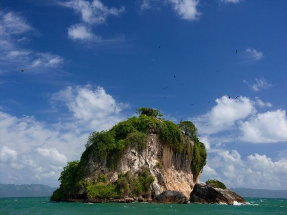 Los Haitises Bird Island
