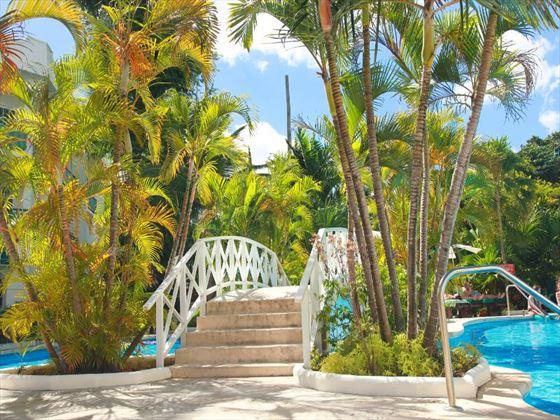 Mango Bay bridge set over the pool