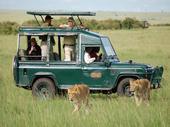 Mara Explorer game drives