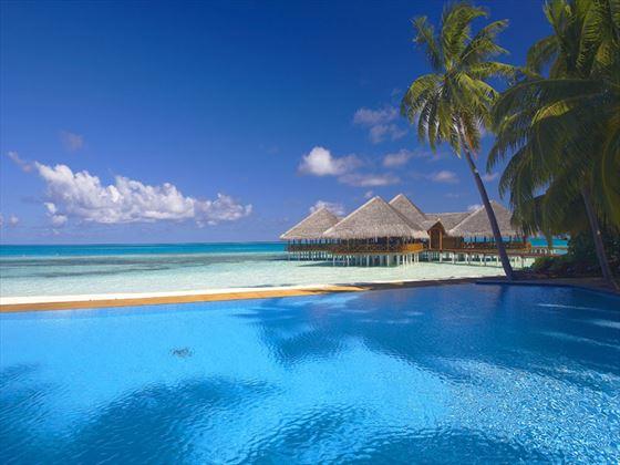 Medhufushi Island Resort pool and bar