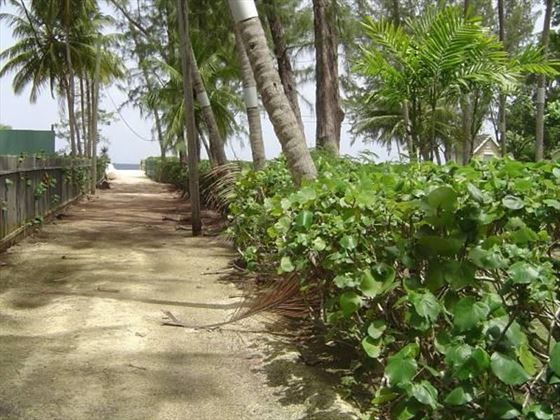 Path leading from the villa to the beach