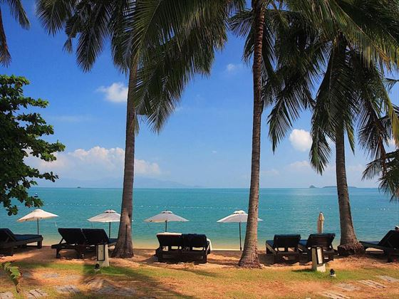 Ocean-facing loungers at Peace Resort Samui