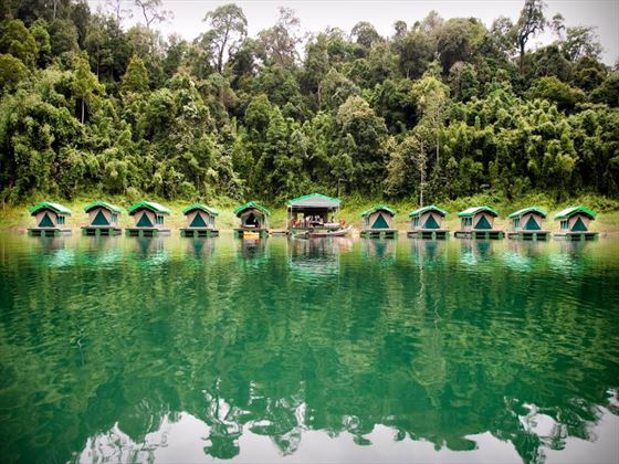 Overwater cabins in the rainforest