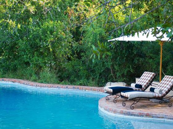 Pool at Ngala Lodge