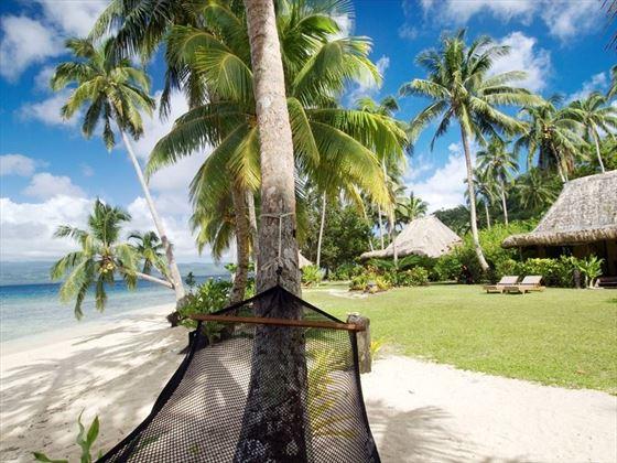 Qamea Resort hammock