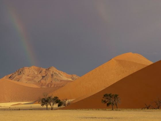 Red dunes in the Namibian desert