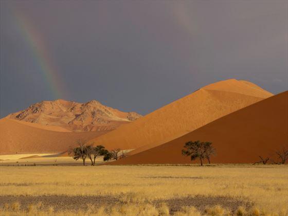 Red dunes of the Namibian desert
